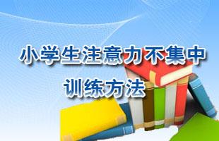 中国注意力训练网